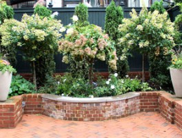 State Street Garden Brooklyn, NY