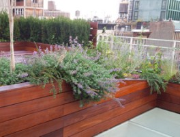Bond Street Roof Deck New York