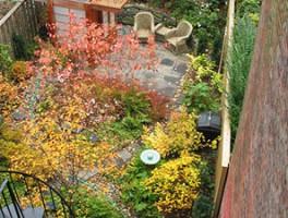 Fort Greene Garden, Brooklyn NY