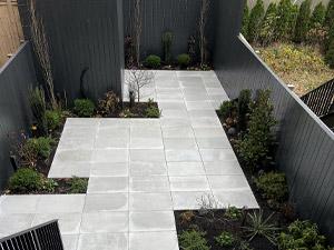 The artist garden 2020 garden highlights